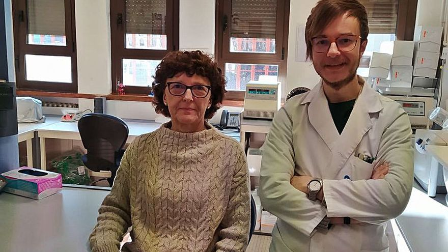 Descubren compuestos capaces de predecir la evolución de la artritis