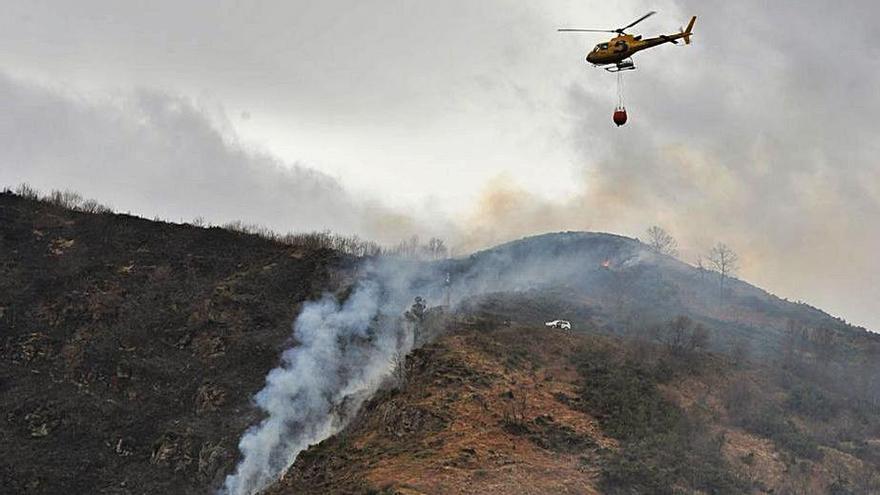 El campus asesorará al Gobierno regional para prevenir incendios forestales