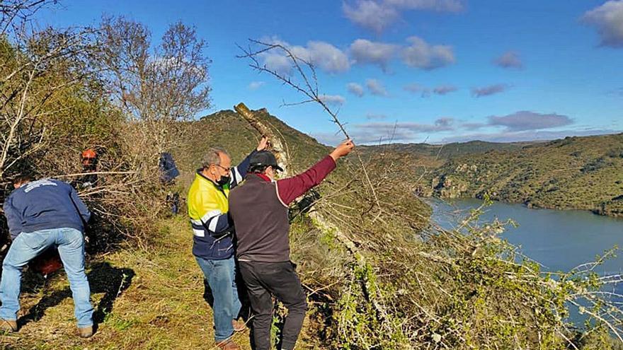 Voluntarios limpian el sendero del Piélago de Fermoselle