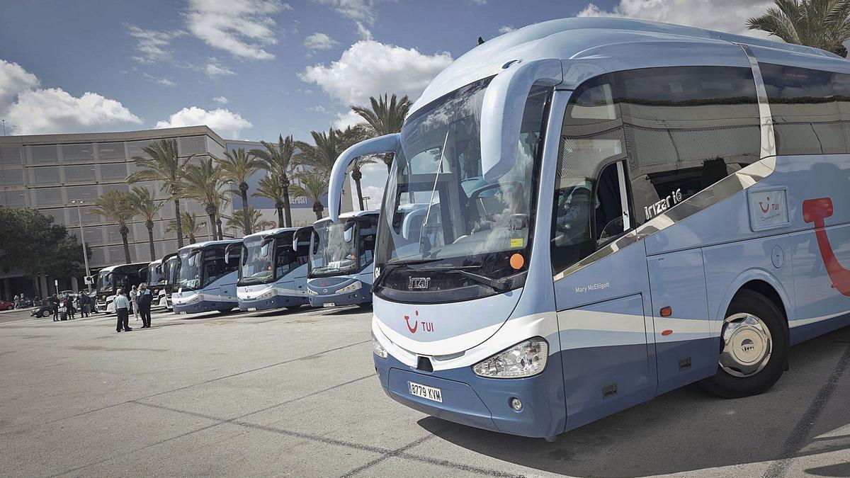 Autobuses de TUI aparcados en el aeropuerto el pasado domingo para el traslado de clientes del turoperador.