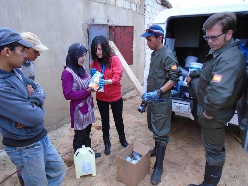 FOTOGALERÍA / Veterinarios de la UCO en Líbano