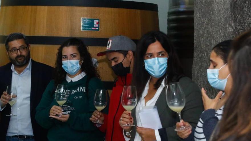 La Mancomunidade do Salnés inicia sus cursos de formación en el sector del vino