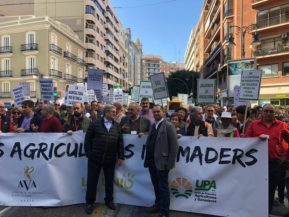 Los productores reclaman al Gobierno soluciones para acabar con la crisis del sector y garantizar la supervivencia de la agricultura