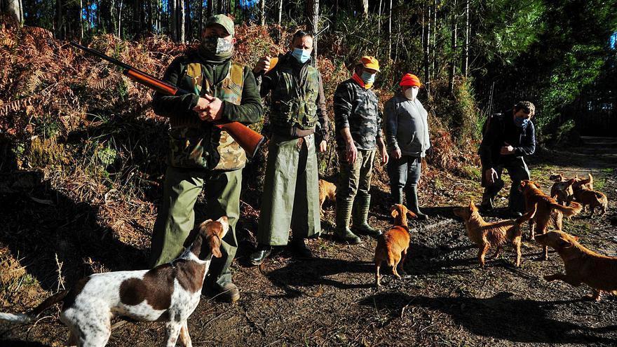Los cazadores de O Salnés constatan el declive de las poblaciones de conejo en sus cotos