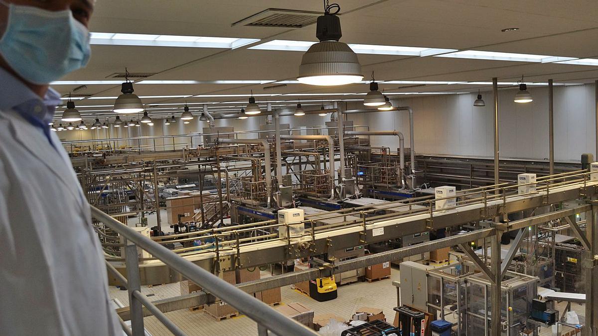 El director general de la fábrica, Javier Suárez, en una de las plantas de producción. | A. M. Serrano