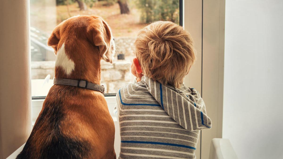 Los niños con perro tienen un mejor bienestar social y emocional.