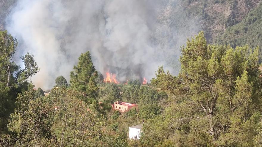 """Martín: """"El incendio de La Orotava pudo ser provocado"""""""