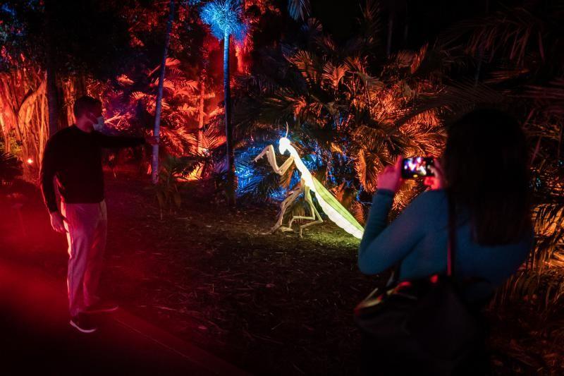 'Naturaleza Encendida'  en el Palmetum (Santa Cruz de Tenerife)