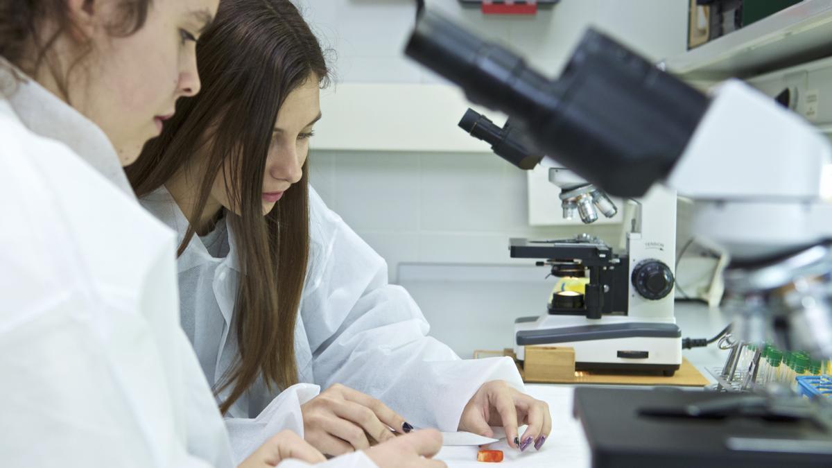 Los másteres de la Universidad de Alicante son, la mayoría, de 60 créditos, es decir, de un año, por lo que permiten acceder a los estudios de doctorado.