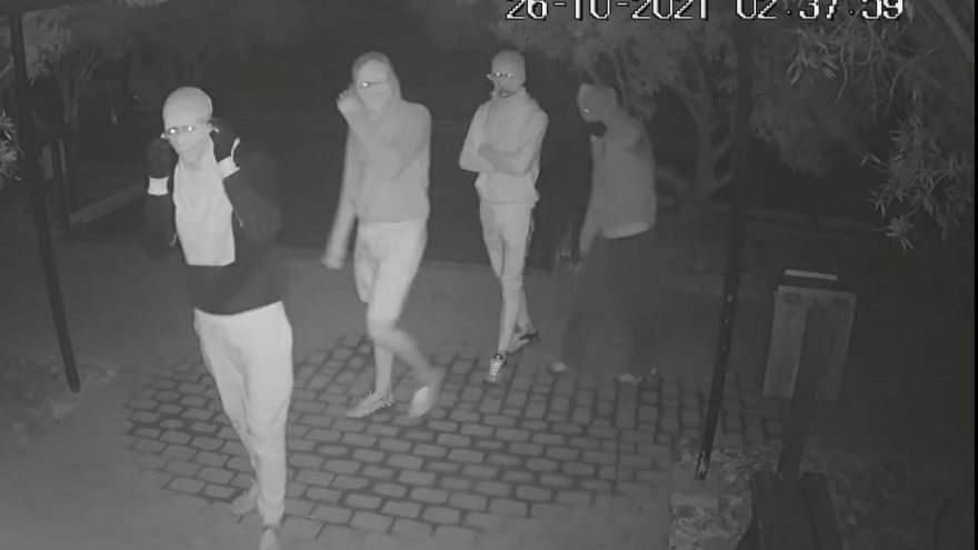 Cinco encapuchados roban dos guacamayos adiestrados de la finca de Los Olivos