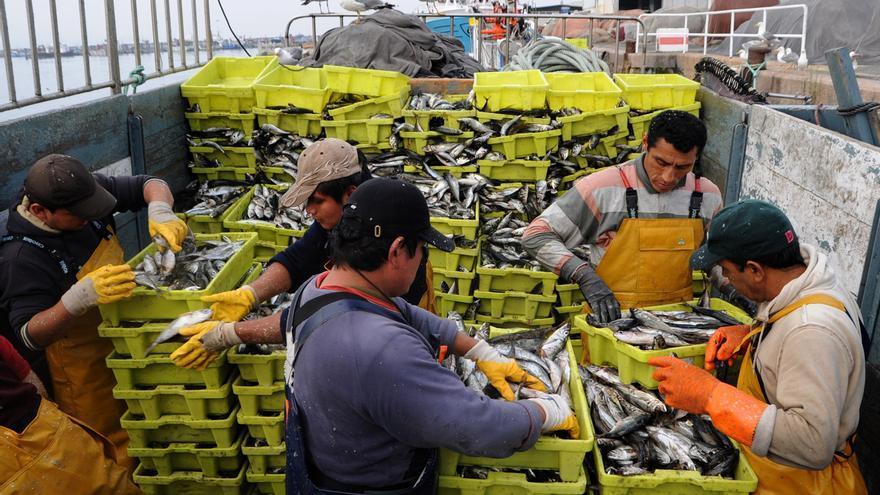Los científicos aconsejan a la UE reducir el esfuerzo pesquero para seis especies