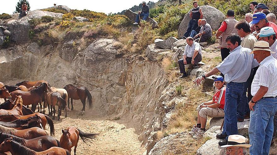 Los comuneros quieren recuperar la cría de caballos y el curro das Laceiras
