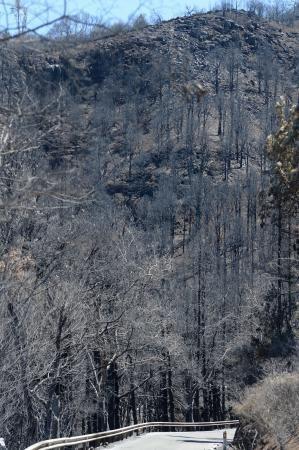 Consecuencias del incendio: De Valleseco a Artenar
