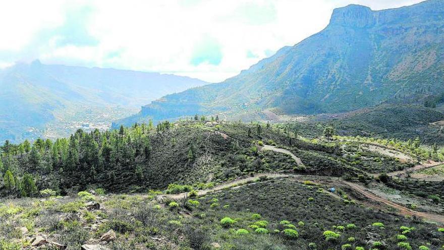 Gran Canaria en tres partos