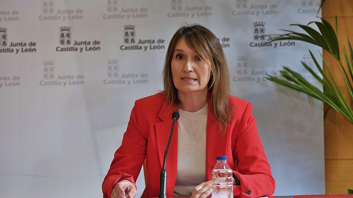 Rocío Lucas, consejera de Educación de la Junta de Castilla y León. | Europa Press