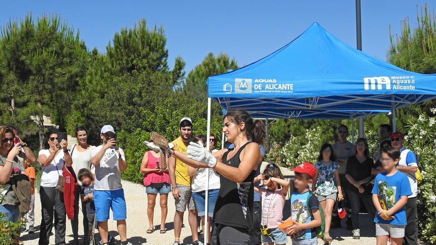 Aguas de Alicante incrementa su fondo social hasta 1,5 millones para paliar la crisis Covid