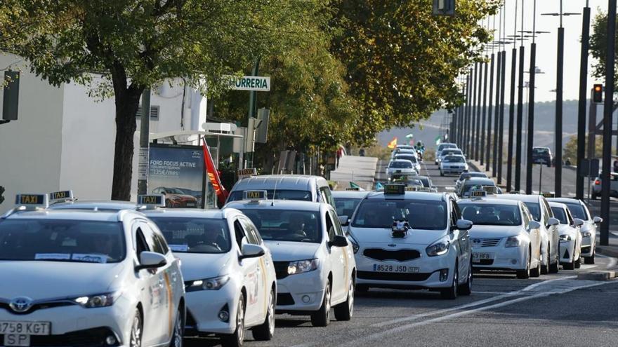 Más de doscientos taxis marchan en protesta por Córdoba para exigir el control de los vehículos VTC