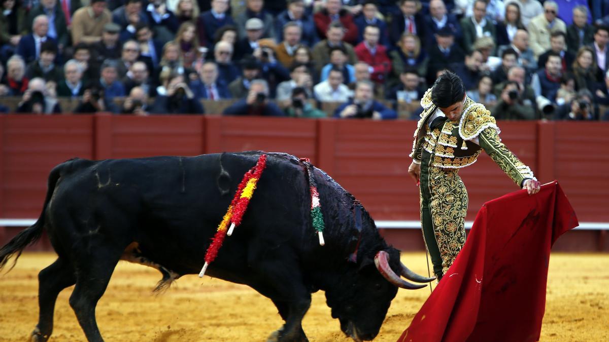 Pablo Aguado, que hará su debut en Castellón, es uno de los toreros más esperados por la afición después de su explosión en Sevilla 2019.