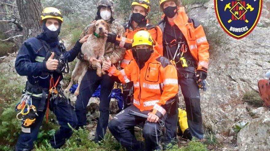 Los bomberos rescatan a un perro caído en una sima en Escorca