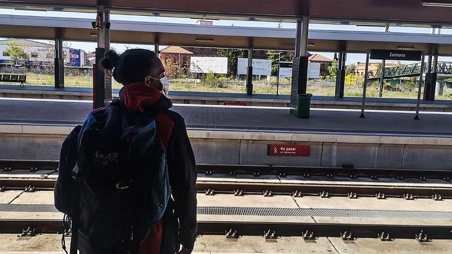 Sin tren para volver a Zamora