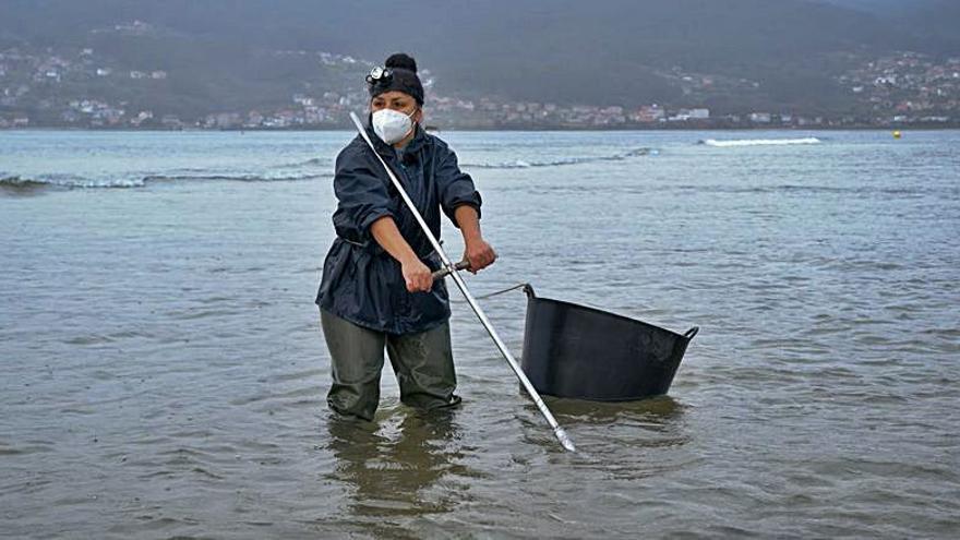 'O Clan das Mariñeiras' mostrará el trabajo de las mariscadoras en Raxó