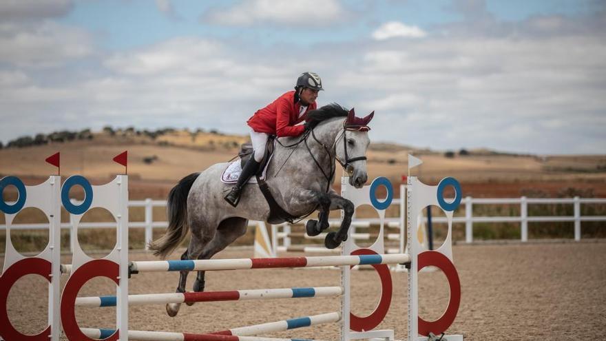 Más de 100 caballos en el Campeonato de Doma Clásica de Castilla y León en Zamora