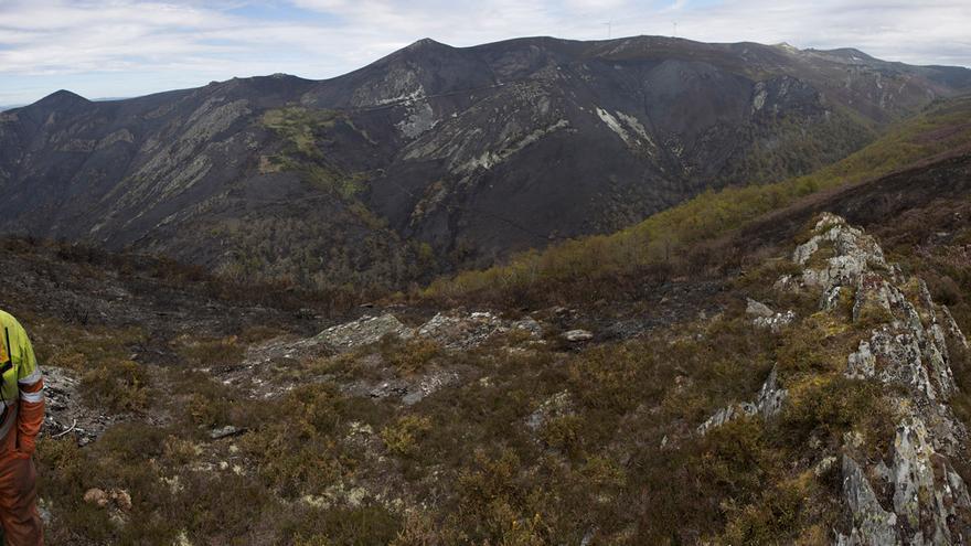 Arde sobre quemado en Allande: el incendio que amenazó un tesoro natural
