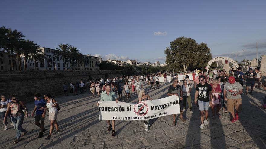 Manifestación de antivacunas en Palma