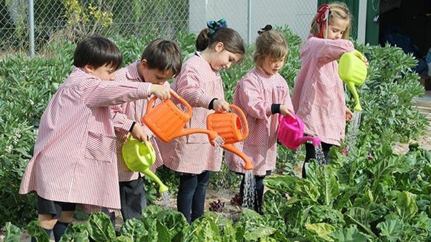 CEU, educación innovadora en Alicante que ayuda a los alumnos a crecer y desarrollarse como personas