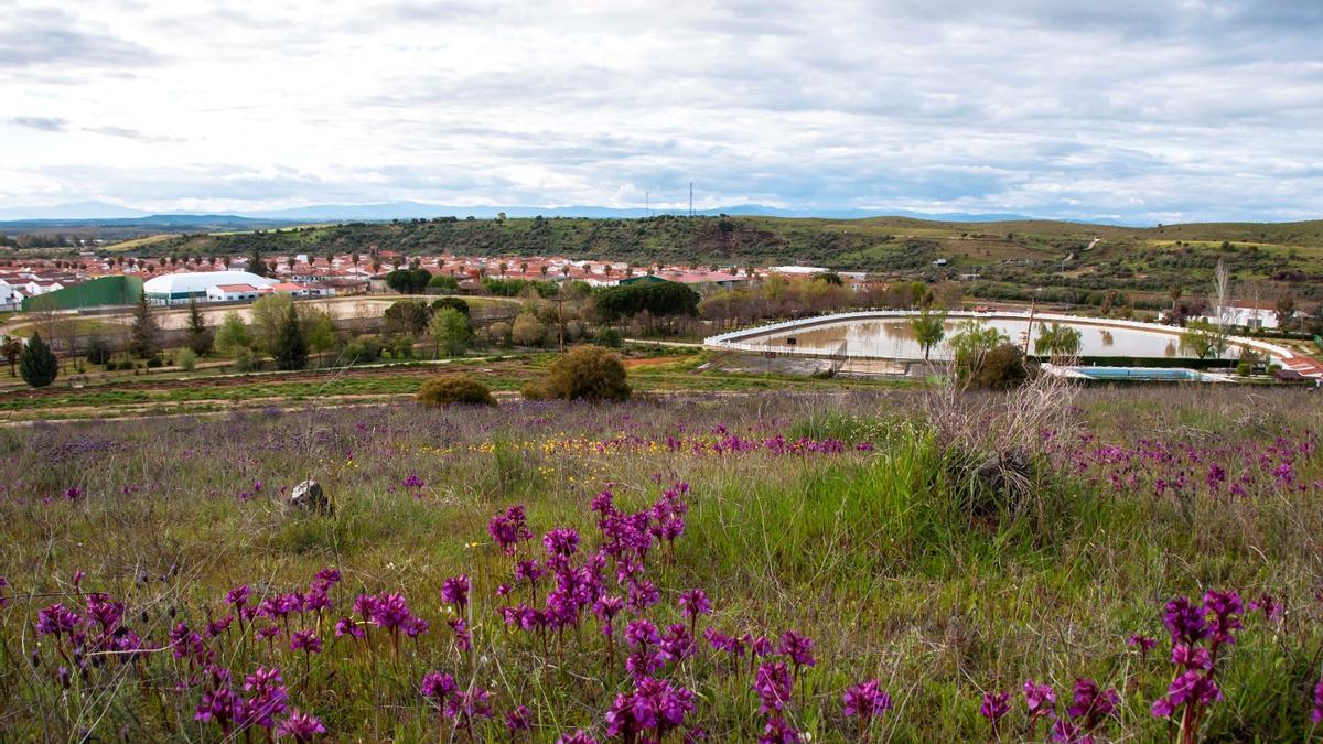 Vista general del Cerro Tomillar, en Riolobos