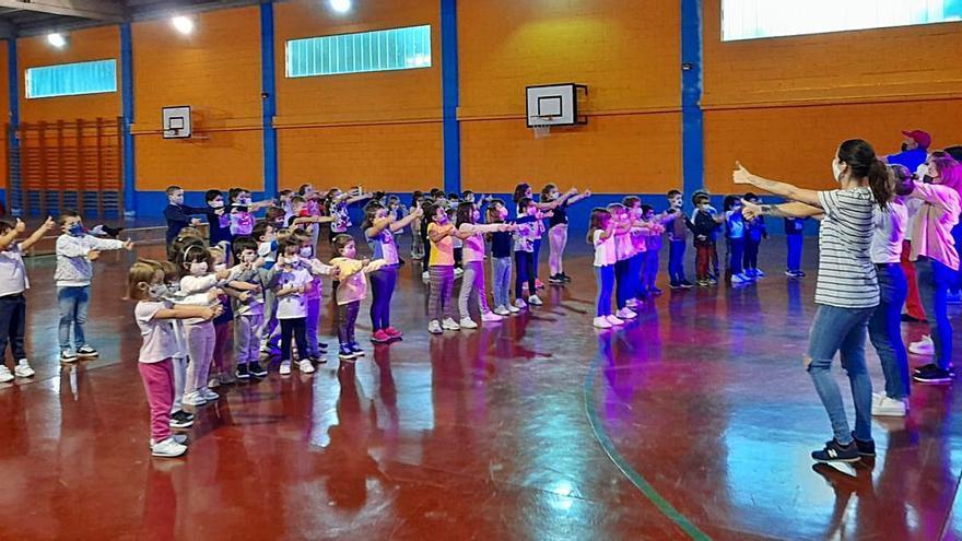 El CEIP O Foxo despide el curso moviéndose al ritmo de la música