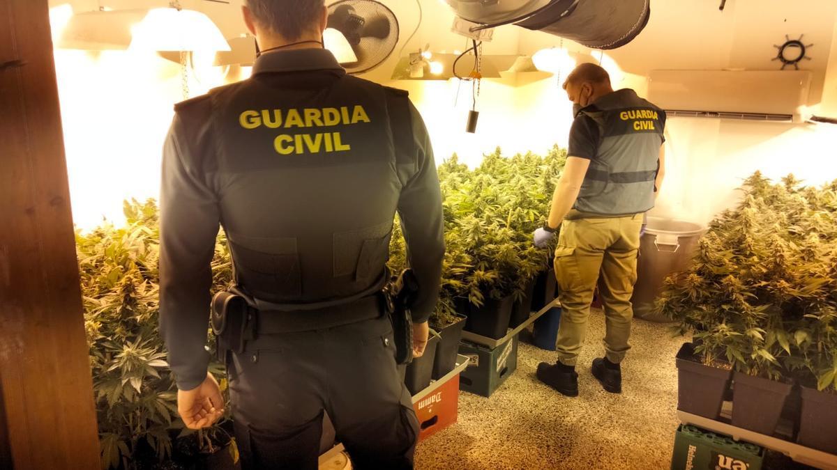 Agentes de la Guardia Civil en la plantación de marihuana en s'Arenal.