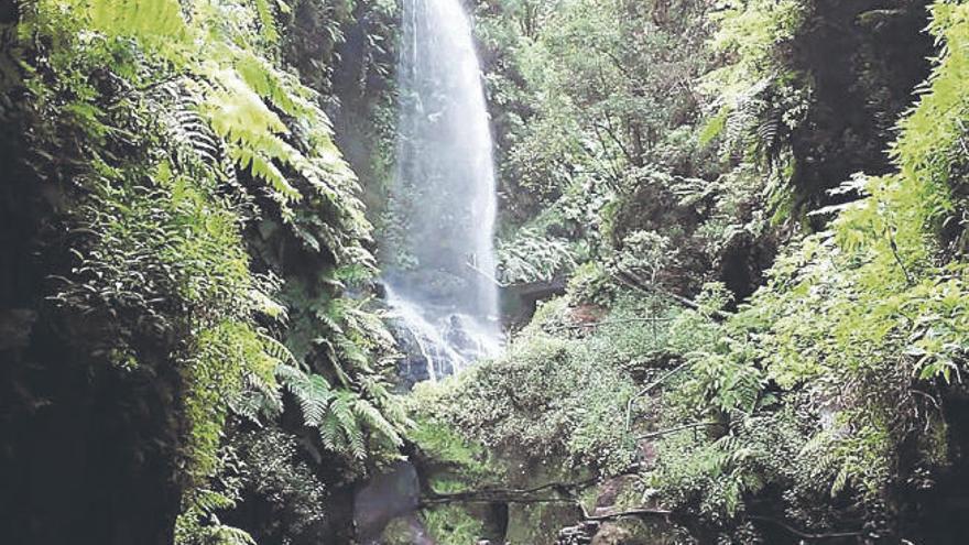 La Reserva de la Biosfera palmera recibe una ayuda para impulsar el turismo