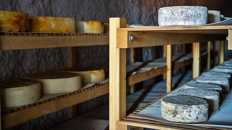 El queso de la Isla protagoniza un nuevo texto de la revista 'National Geographic'