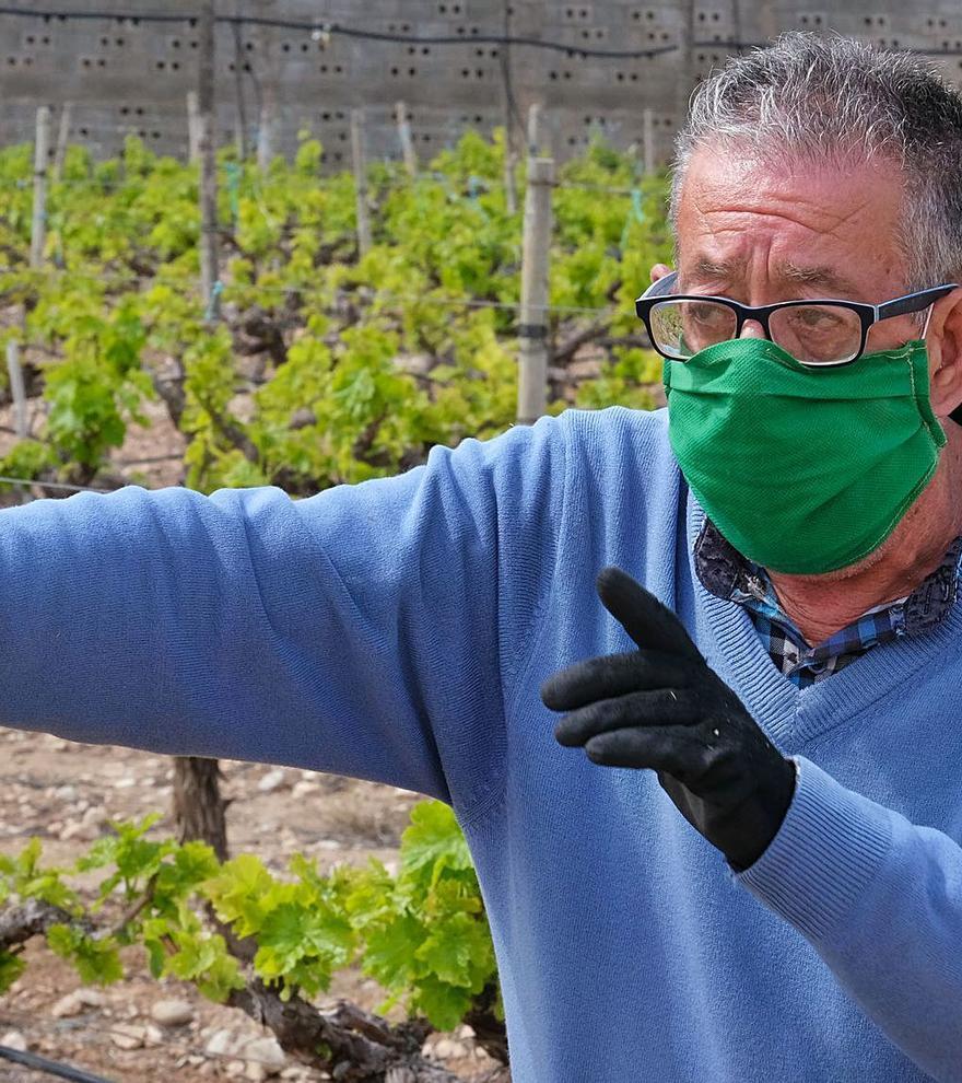 Pedro Rubira: El campo altruista