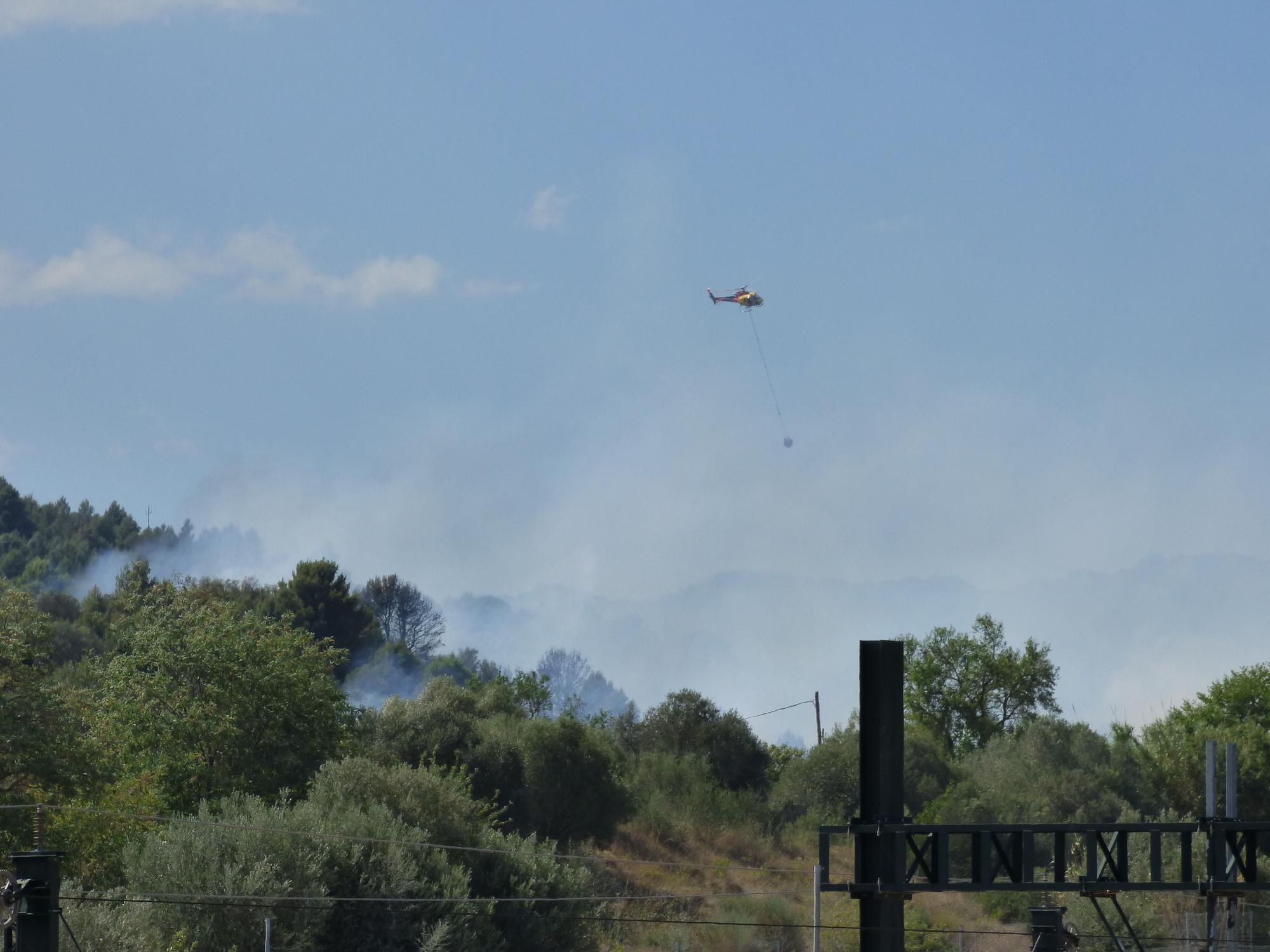 Un incendi ha cremat 3,5 hectàrees al costat de l'Ap7 a Vilafant