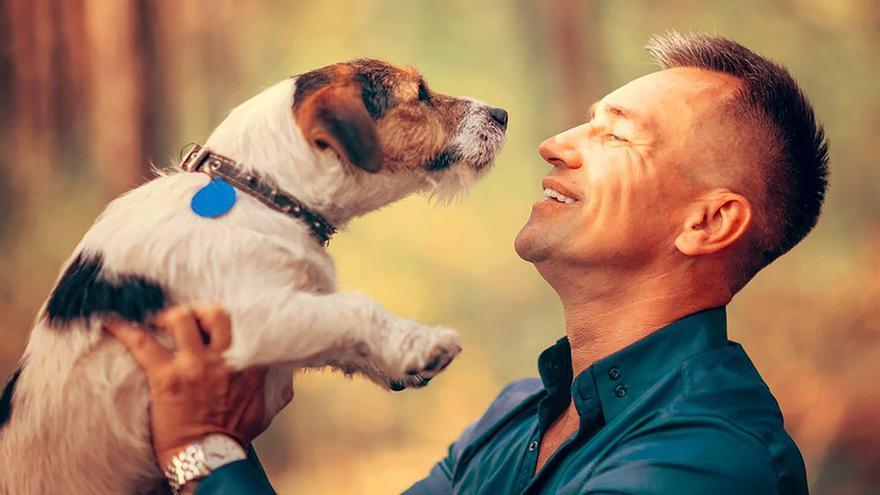 La Ley de bienestar animal prohibirá la cría a particulares y la compra de animales en tienda
