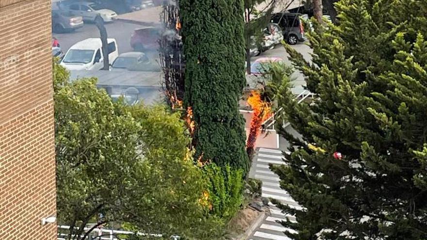 Se declara un incendio entre la vegetación exterior del Hospital Lluís Alcanyís