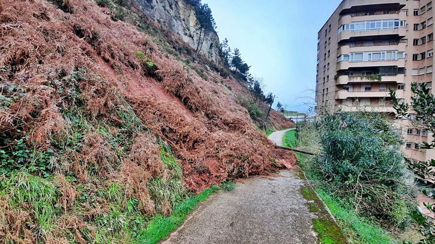 Los vecinos de Salinas temen nuevos daños tras otro argayo en el camino de Piemonte