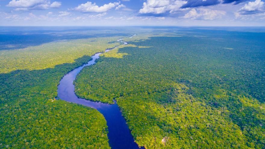 Amazonas: la devastación que no cesa