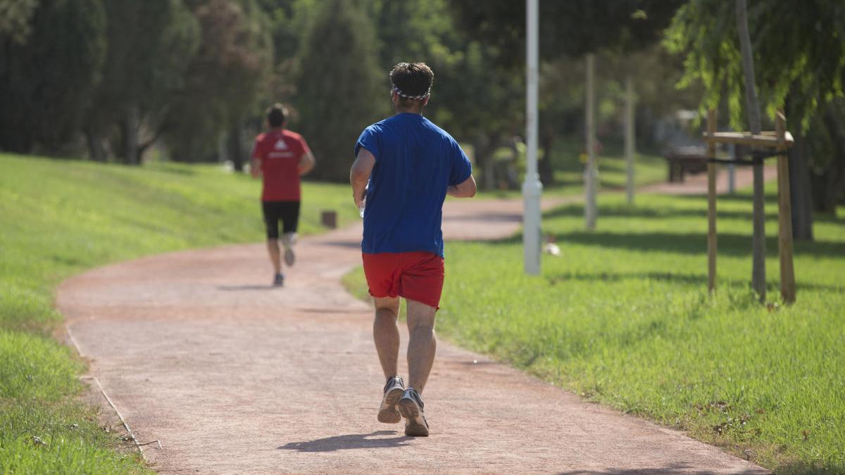 Descubre cómo podrás correr de ida y vuelta en el Jardín del Turia con el Circuito 5K