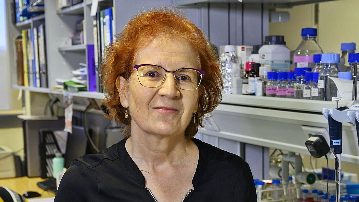 Margarita del Val en su laboratorio del Centro Superior de Investigaciones Científicas.
