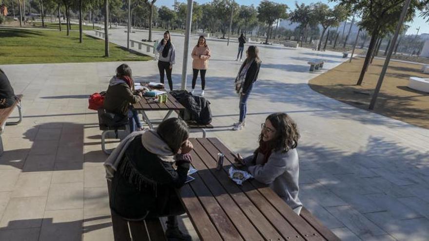 ¿Qué capacidad de acceso a internet tienen los estudiantes universitarios?