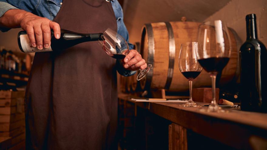 Destacadas vacantes para el sector vinícola en las ofertas de empleo en Aragón de esta semana