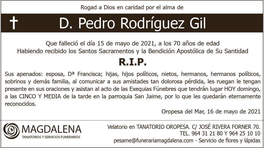 D. Pedro Rodríguez Gil