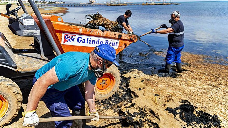 UGT critica que se supla la limpieza del litoral con horas extra sin negociar