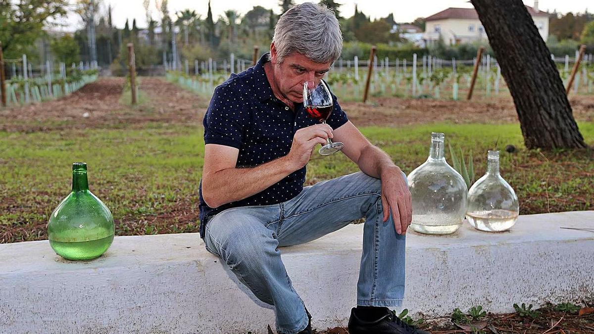 El bodeguero montillano Francisco Robles, en el viñedo ecológico donde se celebrará la actividad.