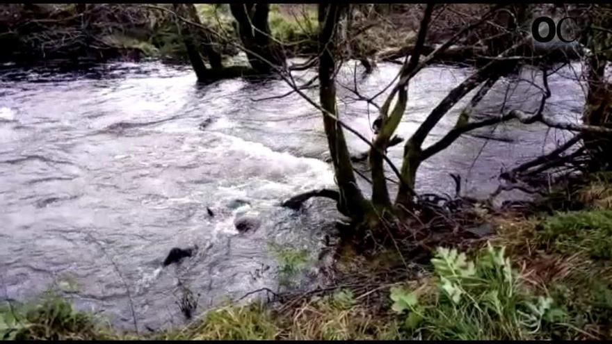 Buzos recuperan en el río Mandeo el cuerpo de un septuagenario de Curtis desaparecido