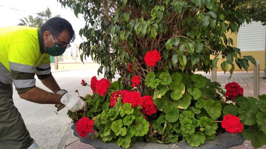 El Ayuntamiento traslada las flores a las pedanías
