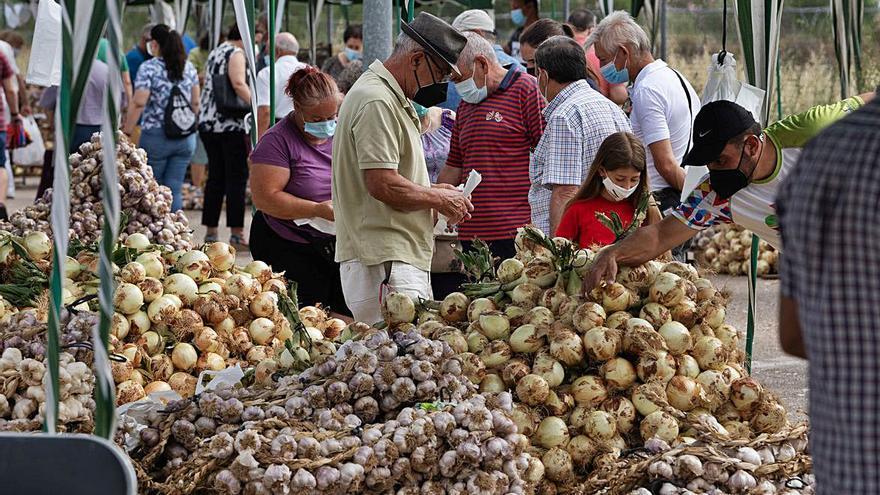 Feria del ajo de Zamora: Menos cabezas, mismo tesoro